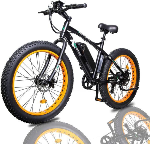 Ecotric Mountain Snow Beach Electric Bike